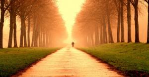 person alone in fog